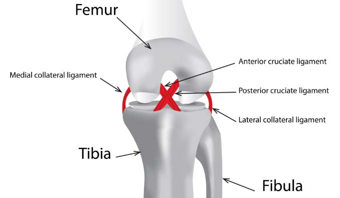 heal knee pain